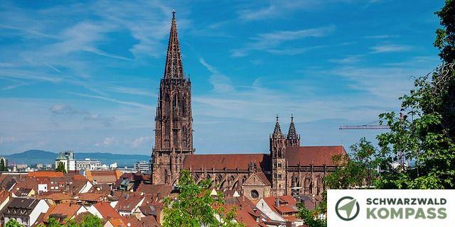 Das Münster ist schön aus dem grünen zu sehen.